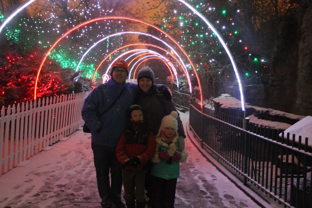 Zoo lights on Boxing Day