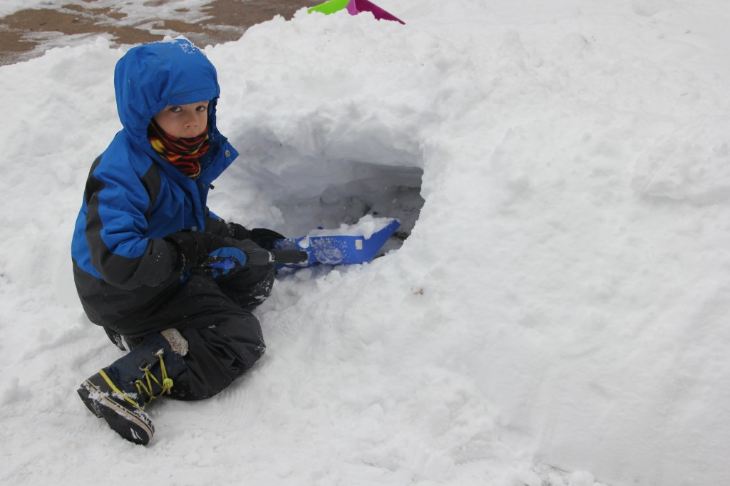 Jude digging a tunnel in the snow in our front yard