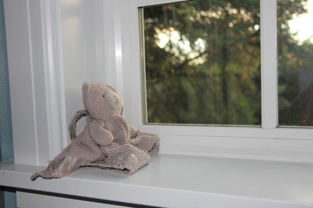Gray blankie has been relegated to the window sill in our closet