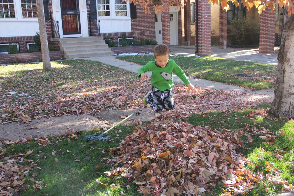 Jude jumping in to a pile of leaves he had just raked