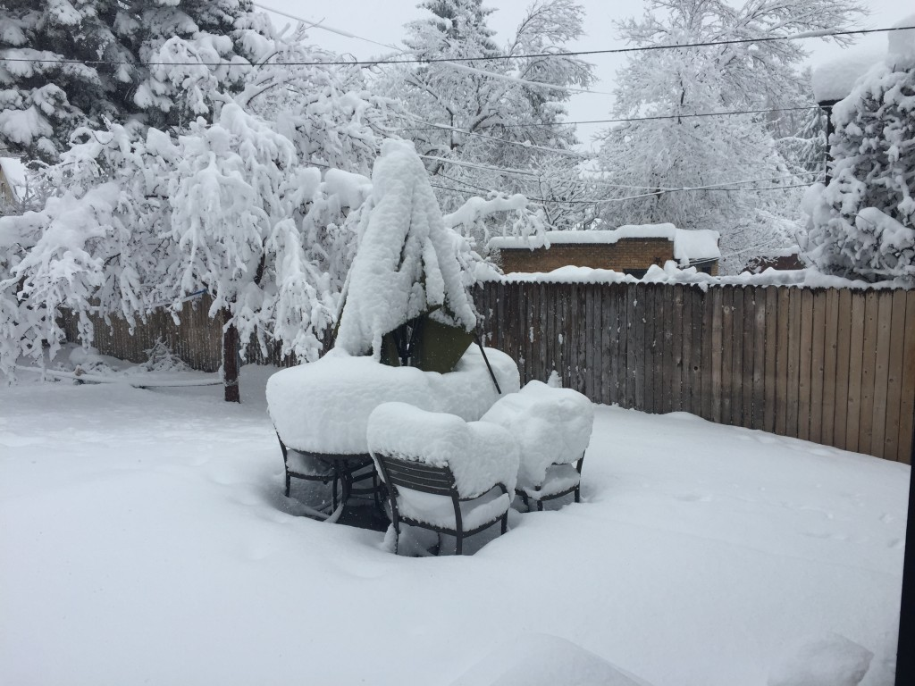 "Our outdoor table is showing at least 18"" of snow from this week's storm"