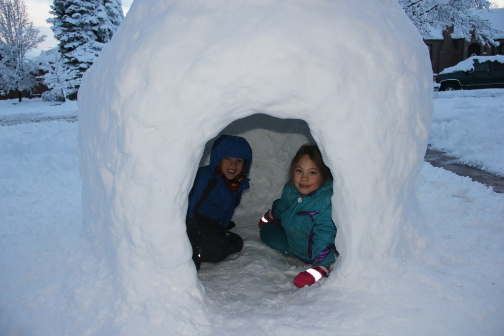 Our neighbors built an igloo in their front yard which the kids thought was very cool