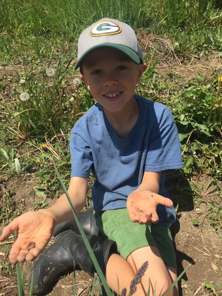 Jude finding some worms in the soil on the farm