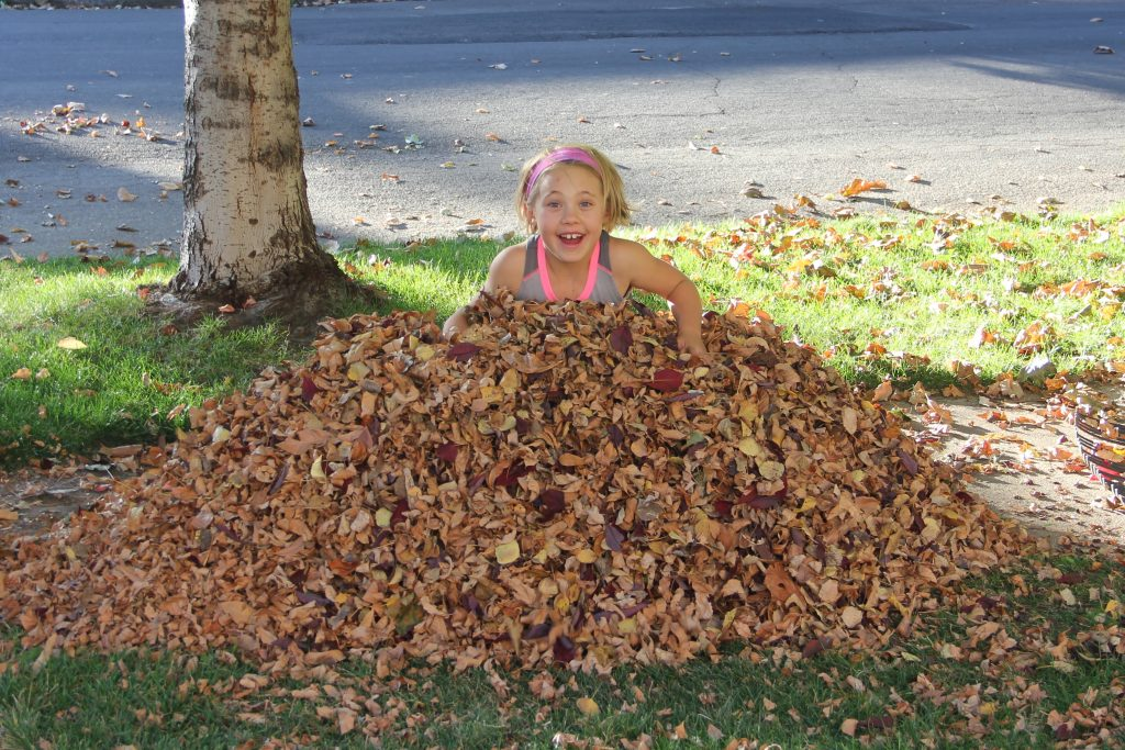Anna dig some raking of leaves and enjoyed playing in her big pile