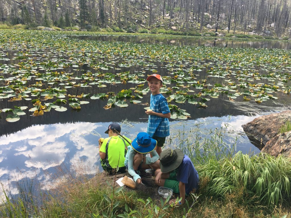 Hunting for leeches in Cub Lake